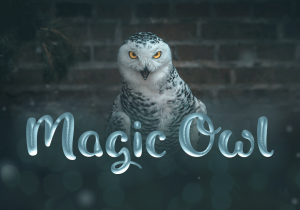 Magic_Owl_Shaped_Fonts