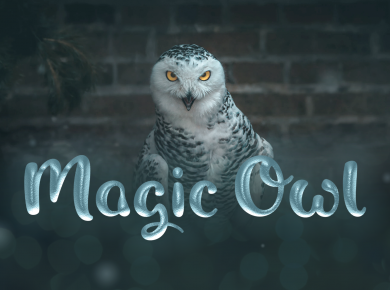 Magic_Owl_Shaped_Fonts