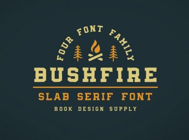 Greg_Nicholls_Bushfire