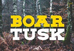 Zone_6_Boar_Tusk