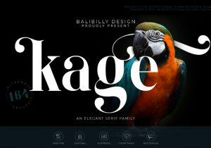 BalibillyDesign_KAGE
